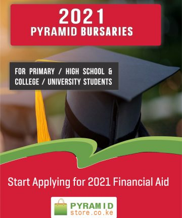Bursary 2021 Pyramid Bursaries for Primary / High School / College / University Students College Students